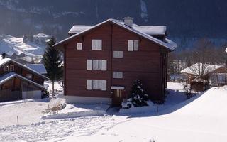 Náhled objektu Im Mettli, Grindelwald, Jungfrau, Eiger, Mönch Region, Švýcarsko