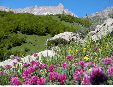 Lyžařská oblast Francie - fotografie