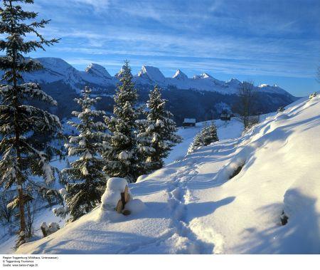 Lyžařská oblast Oberes Toggenburg - fotografie