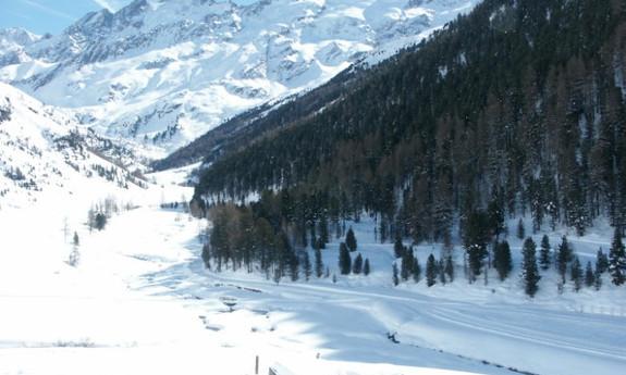 Náhled skimapy areálu Skicenter Langtaufers / Maseben