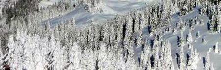 Lyžařské středisko Varena - fotografie