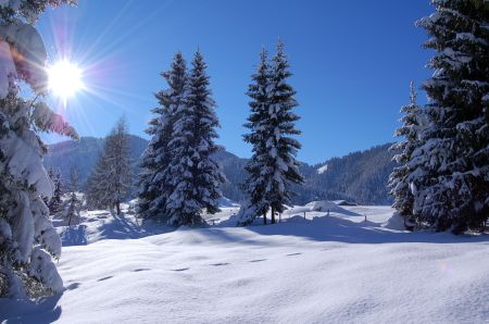 Lyžařské středisko Wildschönau - Oberau - fotografie